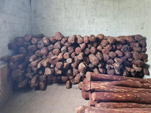 2 held, red sandalwood worth Rs 4.5 cr seized by Bengaluru Central Crime Branch